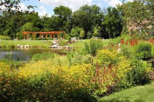 Leczniczy ogród
